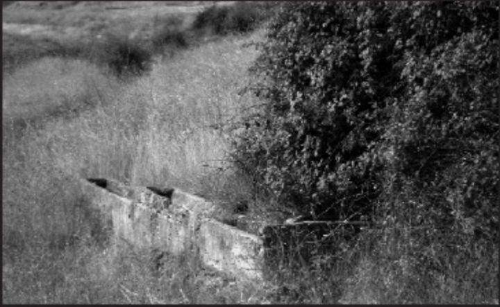 Foto 1. Fuente Cagá sin agua, muy deteriorada y oculta por la maleza hasta que fue recuperada en 2008