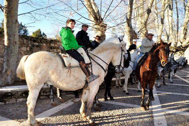 Algunos caballos en San Anton 2016